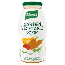 Knorr Garden Vegetable Soup 450Ml